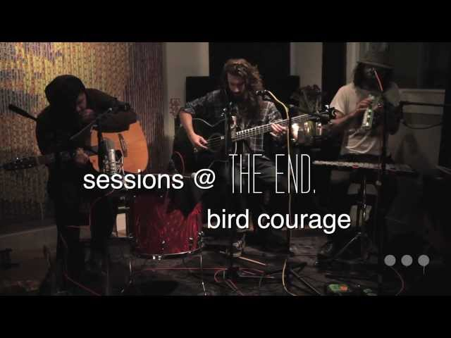 "Sessions @ The End: Bird Courage — ""Willow Tree"""