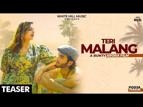Pooja Thakur New Hindi Song Teri Malang Lyrics