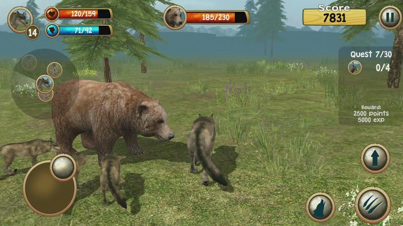 Wild Wolf Gameplay