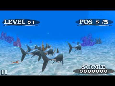 Trailer Fish Race