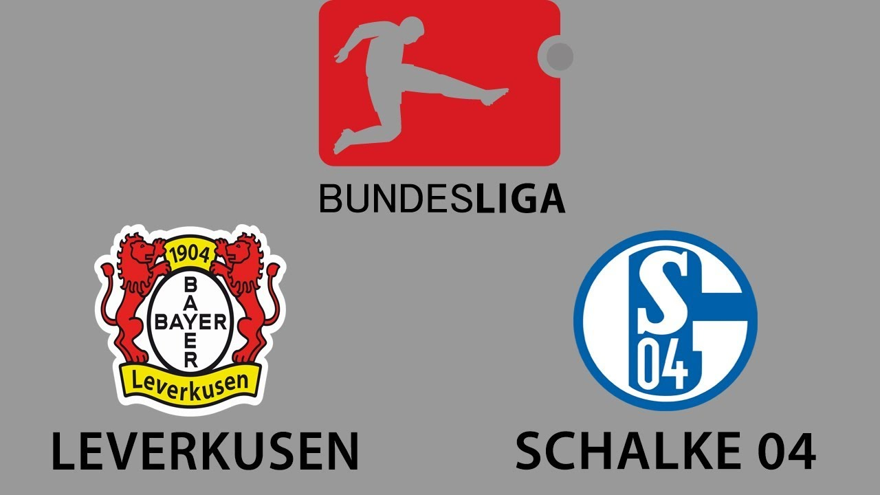 Schalke Bayer Leverkusen