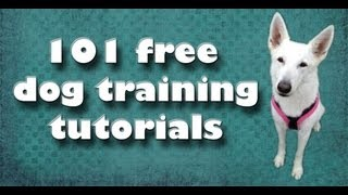 Free Dog Training Videos List- Clicker Dog Training