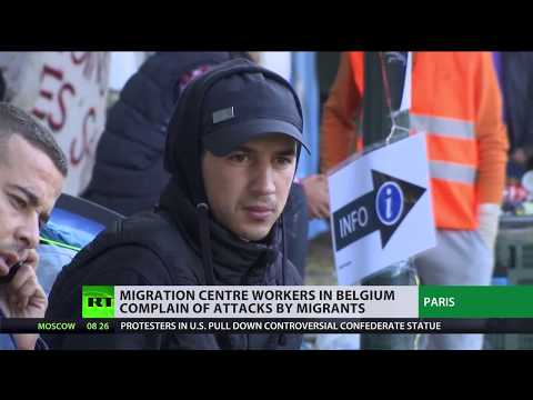 'Refugees have no respect for volunteers': Belgian migration centre staff complains of attacks
