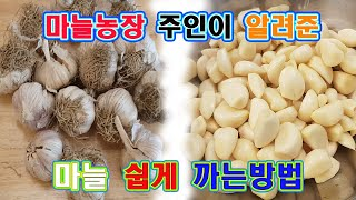 마늘껍질 쉽게 까는방법 (마늘 농장 주인이 알려준 방법…