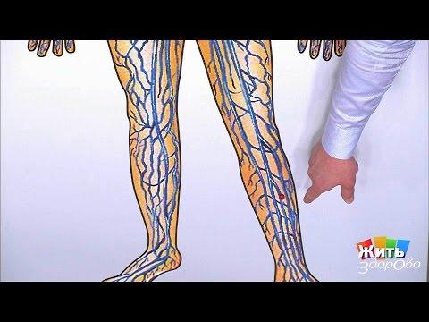 Ниже икры болит нога