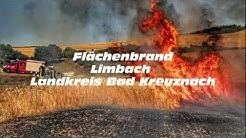 Flächenbrand in Limbach löst Großeinsatz aus