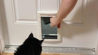 Installing a Cat Door