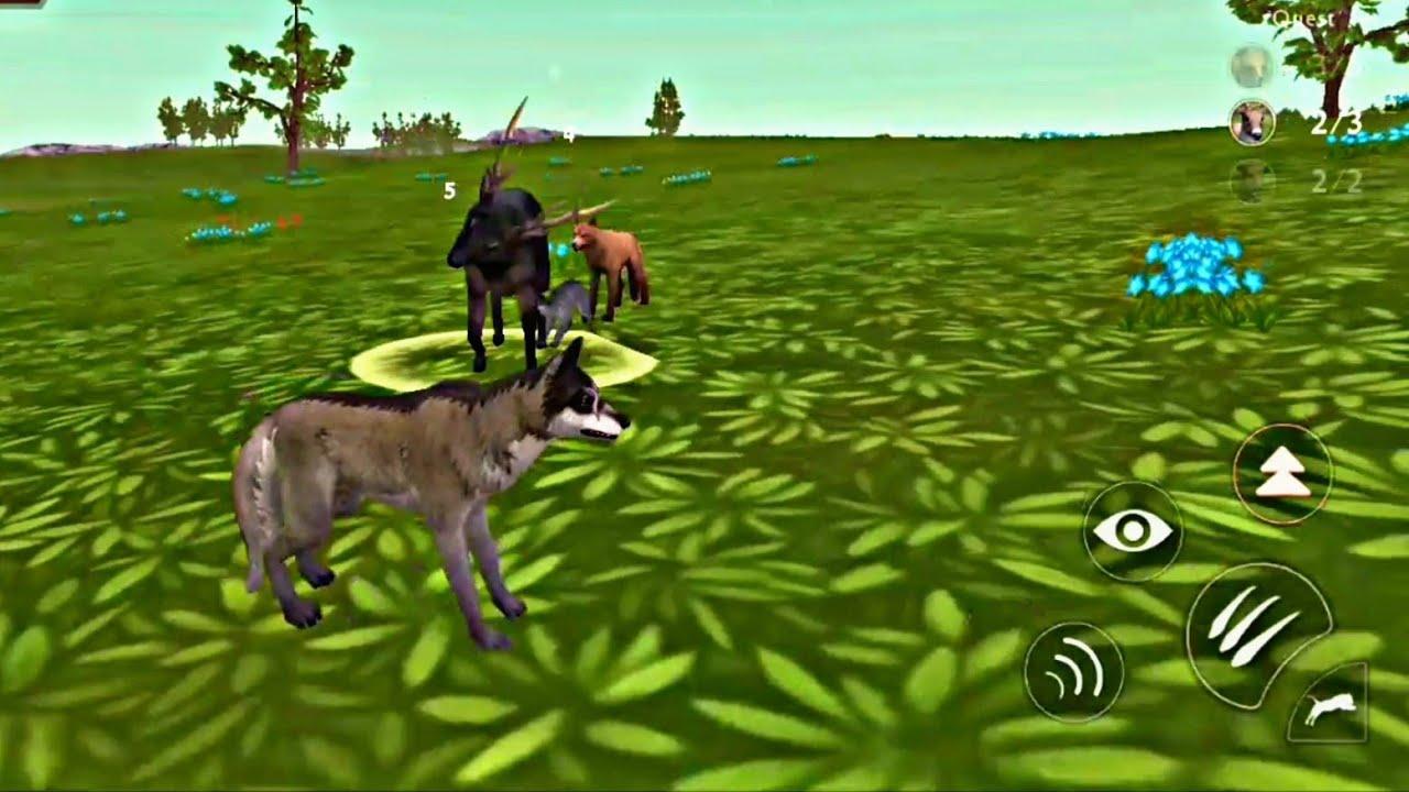 لعبة الذئب #27 | العاب حيوانات مفترسة animals Games | العاب اطفال