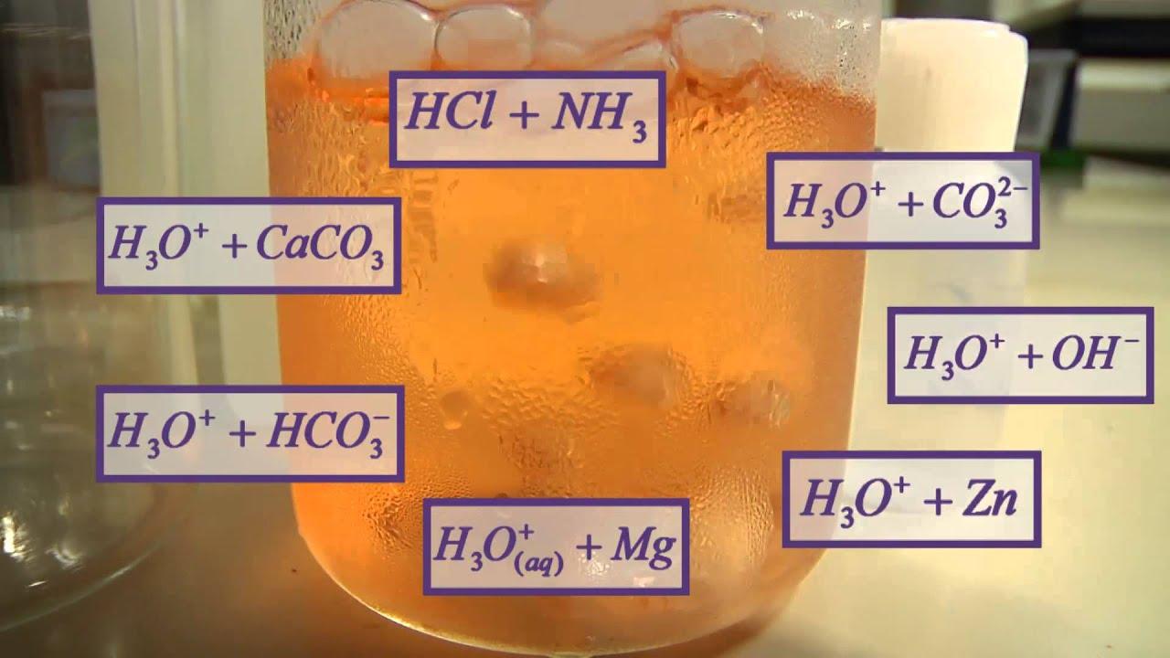 Typical Acid Reactions תגובות אופייניות של חומצה