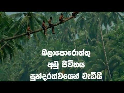🇱🇰Sepalikawo Sinhala Song 2019   Sepalikawo Deep House Mix Dj    Dj DiyATH   RAM SRI Original****