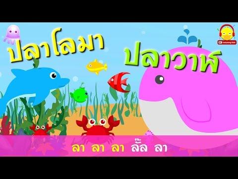 เพลงเด็กคาราโอเกะ ♫ เพลงโอ้ทะเลแสนงามมีปลาวาฬปลาโลมา ♫ เพลงเด็กอนุบาล indysong kids