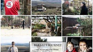 Bakari's Journey - Mit Vier Pfoten auf Reisen