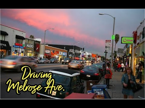 Los Angeles Street Tour: Melrose Ave (End to End)