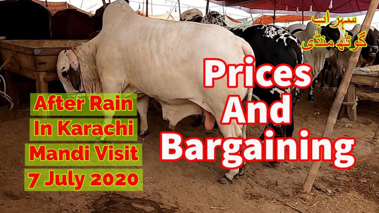 Prices and Bargaining - Sohrab Goth Maweshi Mandi Visit After Rain In Karachi
