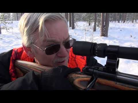Michigan Elk Hunt - Michigan Out of Doors TV  #1750