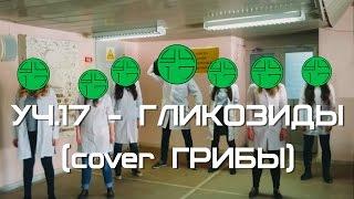 """Грибы - Тает лед (пародия студентов-медиков """"Гликозиды"""")"""