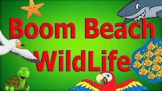 All WildLife In Boom Beach - Crabs, Fish, Starfish and More