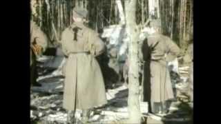 Крушение НЛО в 1969г. в  СССР.Секретные архивы КГБ.