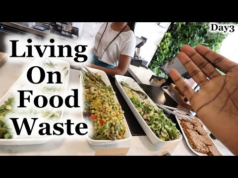 Living on Food Waste | Karma - Day3