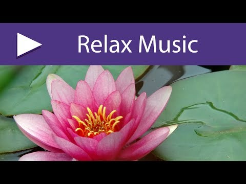The Perfect Oasis Of Chakra Balancing & Cleansing | Lotus Blossom, Music For Reiki
