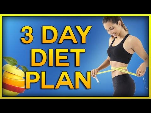 1200 Calories per Day with this 3 Day Diet Menu, Lose 4 Pounds in 3 days