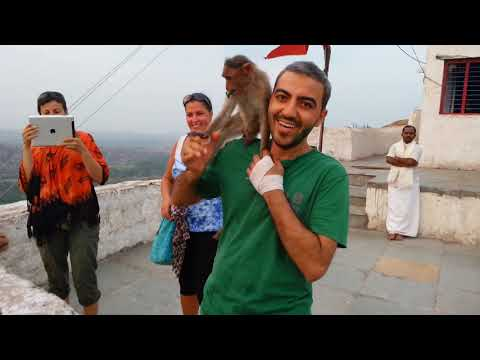 Monkeys interact and have fun with people at Hanuman temple, Hampi, India.