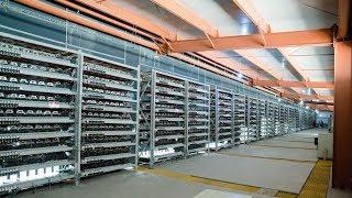 Bitcoin Profits Falling Hashrate Rising