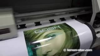 1.8m large digital photo printer with epson dx5 eco solvent printheads