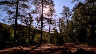 Jaytech - Timelapse(Original Mix) [Bonus Track]