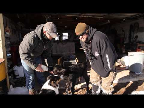 Growing up Hunting in Nevada - Dead Dog Walkin' s1e1