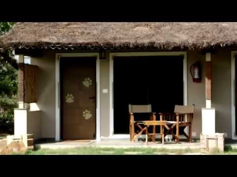 Asiatic Lion Lodge, Sasan Gir (Gir National Park)visit video....