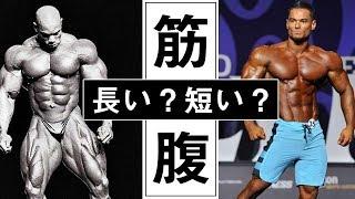 【フィジーク】筋腹と骨格の違いが見た目にもたらす影響とは?【ボディビル 】