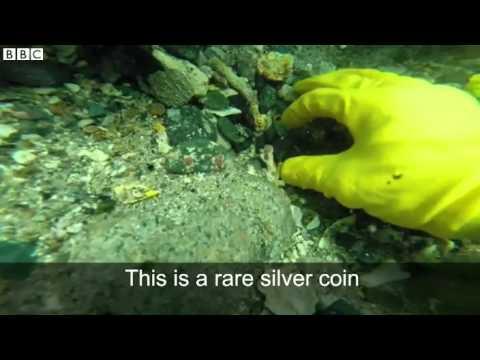 Divers uncover 500 year old Vasco da Gama fleet treasure   BBC News
