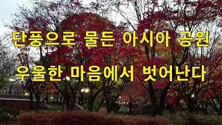 아시아공원의 산책길과 붉게 물든 단풍을 본다