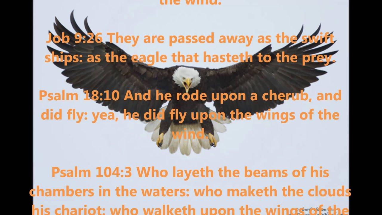 Bible Symbols Wings Youtube