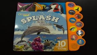 Video Discovery Kids: Splash in the Ocean download MP3, 3GP, MP4, WEBM, AVI, FLV Juni 2018