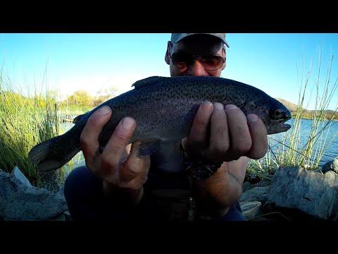 Lake Skinner Trout Fishing
