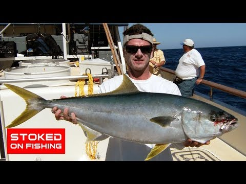 San clemente island yellowtail youtube for Davey s locker fish count