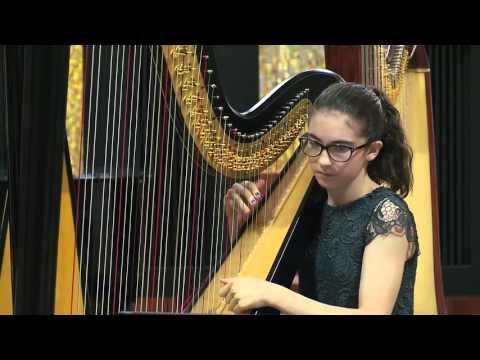 Ensemble d'Arpe I Piccoli Musici di Casazza