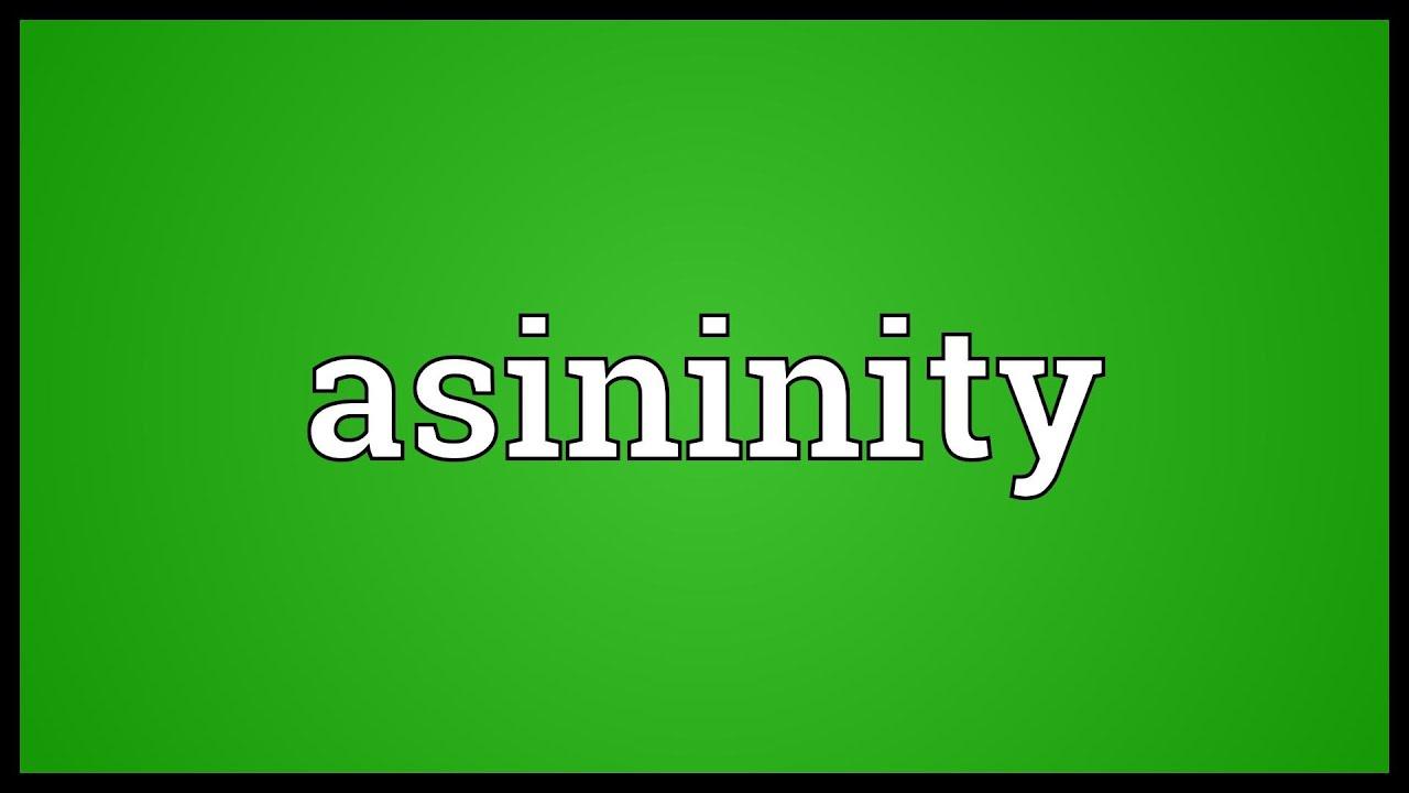 Asininity Meaning