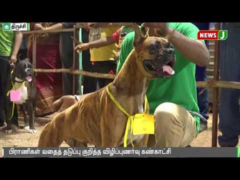 பிராணிகள் வதைத் தடுப்பு குறித்து விழிப்புணர்வு கண்காட்சி || Trichy || Dog show