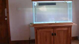The Tank Dr Made And My Diy Cabinet & Filtration System.