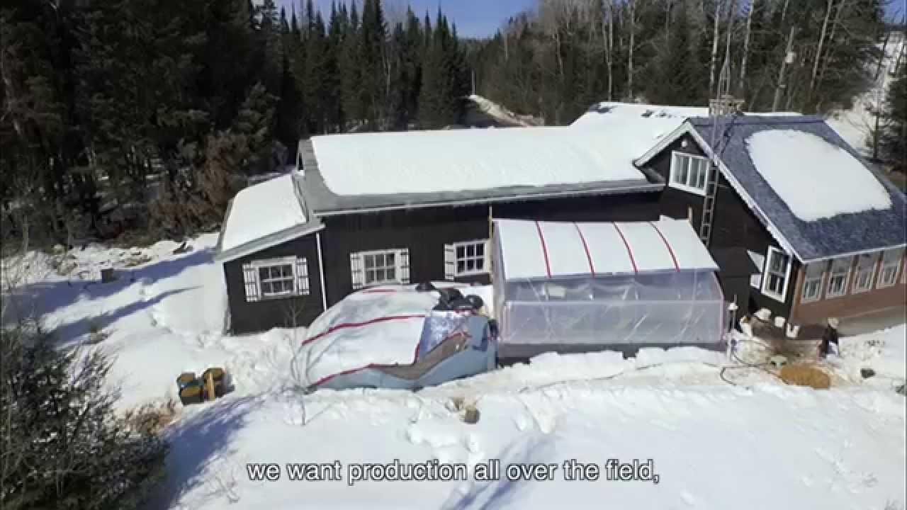 winter passive solar greenhouse with aquaponics youtube