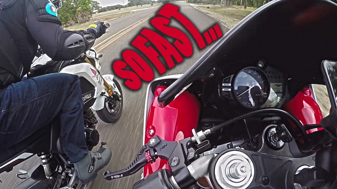 The Fastest Honda Grom   IN THE WORLD