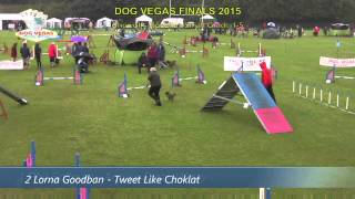 Tictac Wins Dog Vegas Small 1-5 Agility Final