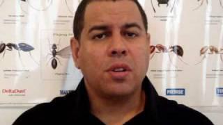 Pest Control NJ - Bedbug, Ants, Bees, Termite, Mice, Fleas Exterminator
