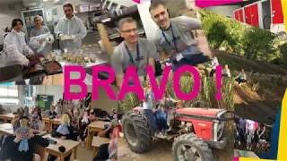 Video My Solidarity Day 2017 - Bravo ! download MP3, 3GP, MP4, WEBM, AVI, FLV Oktober 2018
