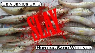 Be a Jenius Ep3 : Catching Sand Whitings Mp3