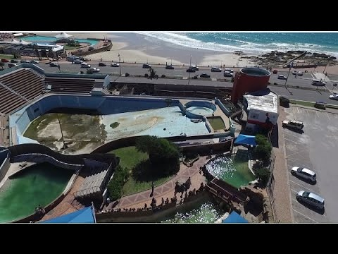 Drone Footage: Port Elizabeth's iconic Bayworld in dire state