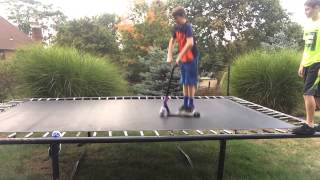 Trampoline scooter game of pig 😎👍🔥